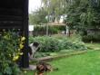 Lillebergi talu ait : 15652 vaade  läänepoolsele uuele vundamendile. Autor Anne Kaldam  Kuupäev:12.09.2010