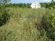 Lohukivi, reg nr 10883. Foto: Ingmar Noorlaid, 07.09.2010.