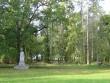 Avanduse mõisa park, 15625 vaade pargi läänepooles osa põhjapoolsele osale  pilt: Anne Kaldam  aeg: 24.09.2010