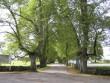 Palmse mõisa alleed 15895 :vaade mõisa poole värava eest otse peahoone teljelt edelasse Autor Anne Kaldam  Kuupäev  23.09.2010
