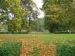 Udriku mõisa park reg. 15680, vaade kirdepoolsele pargialale -peahoonest kirdesse Autor Anne Kaldam  Kuupäev 29.02.2010