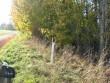 Reastvere asulakoht Autor: Sille Raidvere Kuupäev: 06.10.10