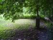 Autor Tarvi Sits  Kuupäev  25.07.2005