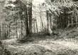 Maa-alune kalmistu. Foto: M. Pakler, 1979.