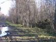 Mälestise poole viiv metsatee lääne poolt. Foto: Kalli Pets, 05.11.2010.