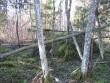 Suur kivi mälestise läheduses? Foto: Kalli Pets, 05.11.2010.