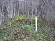 Lohukivi reg nr 10676. Foto: Ingmar Noorlaid, 12.11.2010.