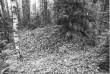 Kääbas reg nr 13615 (38-k). Foto: M. Pakler, 10.10.1979.