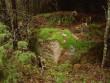 Vaade kivile Tamme ja Õepa külade vaheliselt teelt. Foto: Karin Vimberg, 19.11.2010.