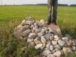 Lohukivi reg nr 10486. Foto: Tõnno Jonuks, 14.09.2010.