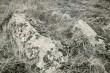 E. Väljal. 4. mai 1989. Vaade mälestisele lõunast.