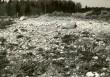 Maa-alune kalmistu - idast. Foto: E. Väljal, 06.05.1986.