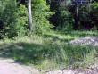 Vaade kalmele Metsapunkti teelt. Foto: A. Rudi, juuni 2002.