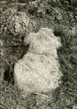 Kivirist maa-alusel kalmistul - lõunast. Foto: E. Väljal, 06.05.1986.