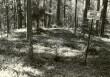 Kääbas - kirdest. Foto: E. Väljal, 17.05.1985.