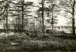 Kivikalme - põhjast. Foto: E. Väljal, 15.05.1985.