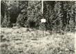 Maa-alune kalmistu - idast. Foto: H. Joonuks, 1976.