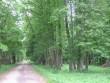 Mõisapark jääb sissesõiduteest paremale. Viktor Lõhmus 08.06.2009