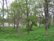 Hulja mõisa park 15660-lõunapoolne osa  Autor Anne Kaldam  Kuupäev  23.05.2006