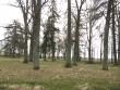 Park idaküljelt pärast talguid Autor Sille Raidvere  Kuupäev  05.05.2010