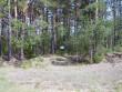 Foto: Tarvi Sits, 05.05.2004.