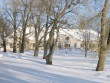 vaade peahoone ees olevale pargiosale  pilt Anne Kaldam aeg. 28 02.2011