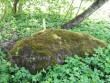 Lohukivi reg nr 10938. Foto: Ingmar Noorlaid, 18.05.2011.