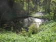 Tiigid ja veejooks viinavabriku juurest Foto Riina Pau 20.05.2011