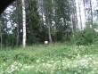 Kivikalme asub tähise taga olevas metsatukas. Foto: Viktor Lõhmus, 06.07.2011.