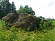 Foto: Triin Äärismaa, 26.07.2011