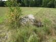 Lohukivi reg nr 10230. Foto: Ingmar Noorlaid, 29.07.2011.