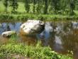 Lohukivi reg nr 10247. Foto: Ingmar Noorlaid, 29.07.2011.
