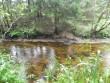Vaade võimalikule Hiiekivi asukohale põhjast. Foto: Triin Äärismaa, 23.08.2011.