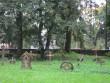 Viru-Nigula kirikuaed, reg nr 5809. Vaade kirikuaia idapoolsele osale. Foto: A. Kaldam, 13.09.2011.