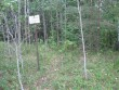 Kalmistu. Foto: Tõnis Taavet, 06.09.2011.