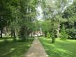 15953 Vihula mõisa park , 17.08.2011, Anne Kaldam, hoonetevaheline allee