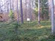 Vaade kääpale ja tähisele. Foto: Viktor Lõhmus, 25.10.2011.