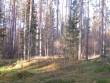 Vaade pikale kääpale Orava küla lähedal. Foto: Viktor Lõhmus, 25.10.2011.
