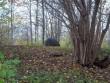 Linnuse ase ja tähis. Vaade idast. K. Klandorf 25.10.2011