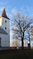 Vaade põhjast kirikuaia piirdeehitisele. Foto: Karin Vimberg, 15.11.2011.