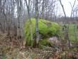 Vaade loodest. Foto Silja Konsa, 01.12.2011