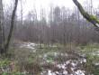 Vaade kalmistule kirdest. Foto: Triin Äärismaa, 13.12.2011.