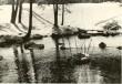 Ohvriallikas - idast. Foto: H. Joonuks, 1976.