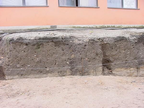 säng ja sohva tartus ~ arheoloogiamälestis (3171) • fotokogu