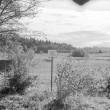 Maa-alune kalmistu, Foto: M. Pakler 1971