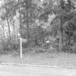 Kivikalme, Foto: M. Pakler 1971