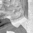 Detail (Adamsoni allkiri reljeefil). Foto: E. Raiküla