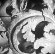 Detail (akantuselehed) Foto: E. Raikküla