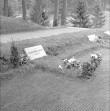 Üldvaade. Foto: R. Valdre, 1965