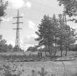 Üldvaade, dolomiit. Foto: H. Kõlar, 1974